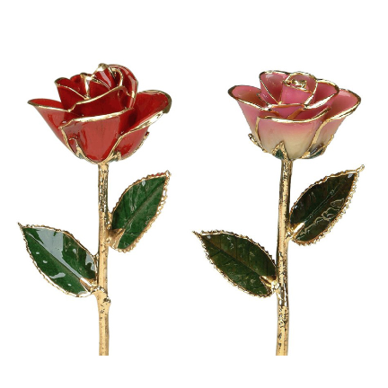 Rose color meanings combinations and mixtures red white 24k gold trimmed roses pairg mightylinksfo